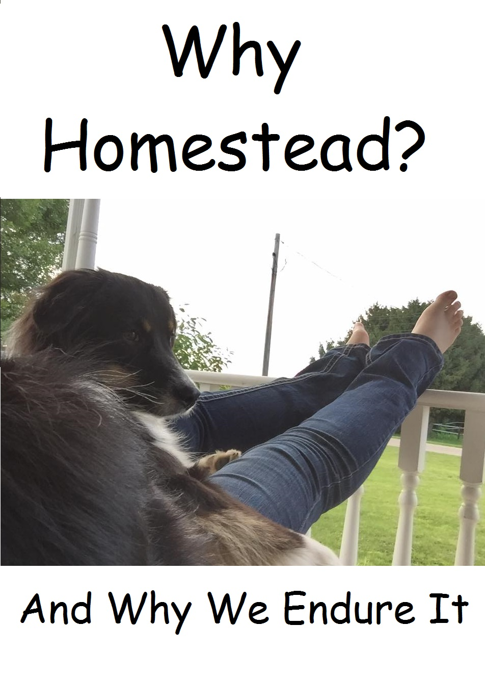 Why Homestead and Why We Endure It