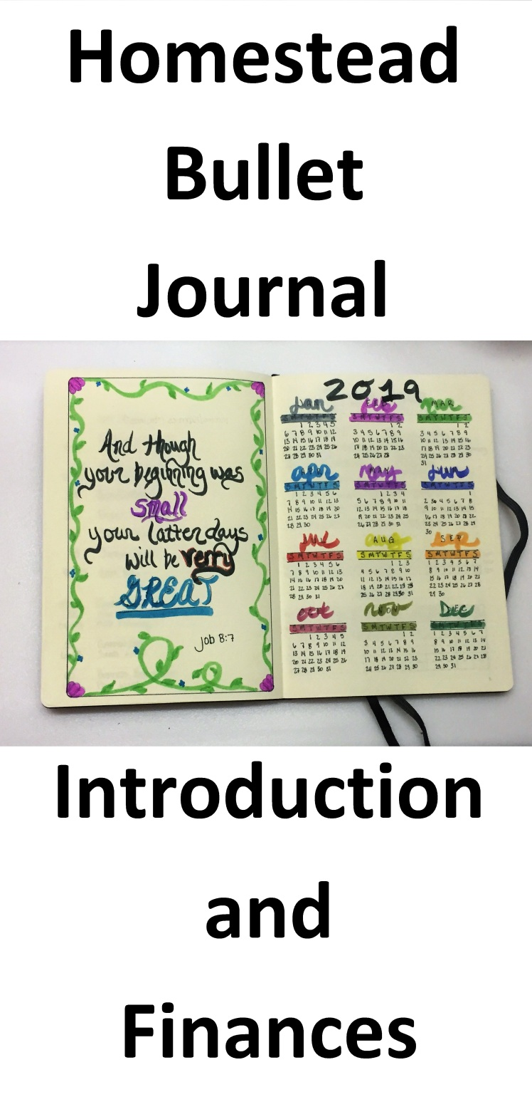 Bullet Journal Intro and Finance