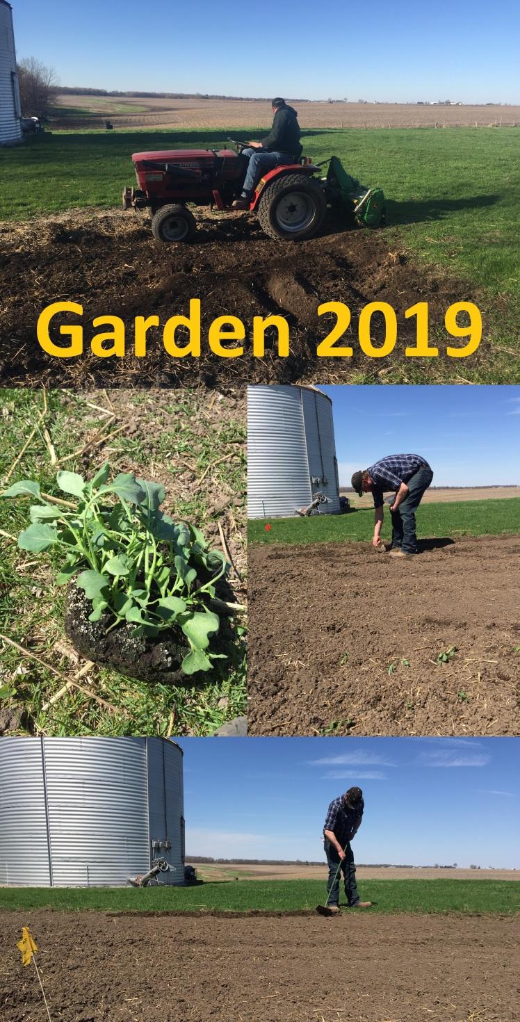 Garden 2019