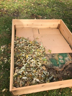 We wanted to cover an old stump (that I had used to spray paint some things!). Cardboard weed barrier and fall leaves for compost and fill.