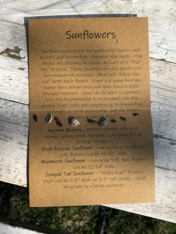 The card in the kit has a description about sunflowers in general and the specific varieties included in the kit (subject to change). Seeds of the varieties were added for fun!